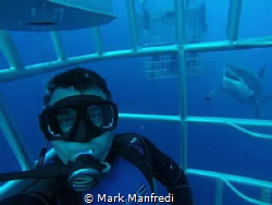 Great White selfie with a gopro by Mark Manfredi